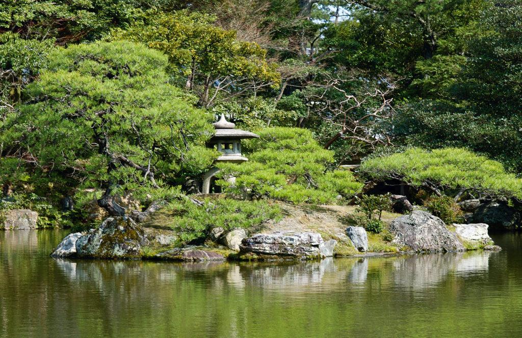 Une île de verdure au milieu d'un lac tranquille.