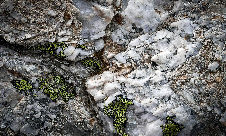Du lichen rhizocarpon geographicum accroché à du quartz