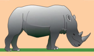 Illustration de rhinocéros